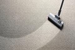 Carpet400X275